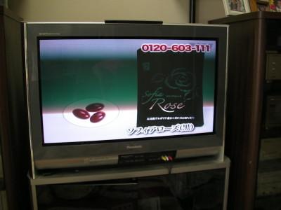 20090619003.JPG